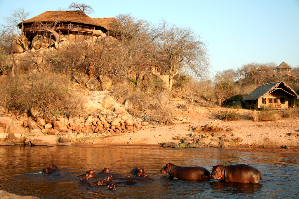 Explore The Ruaha – Remote,Wild, & Real !