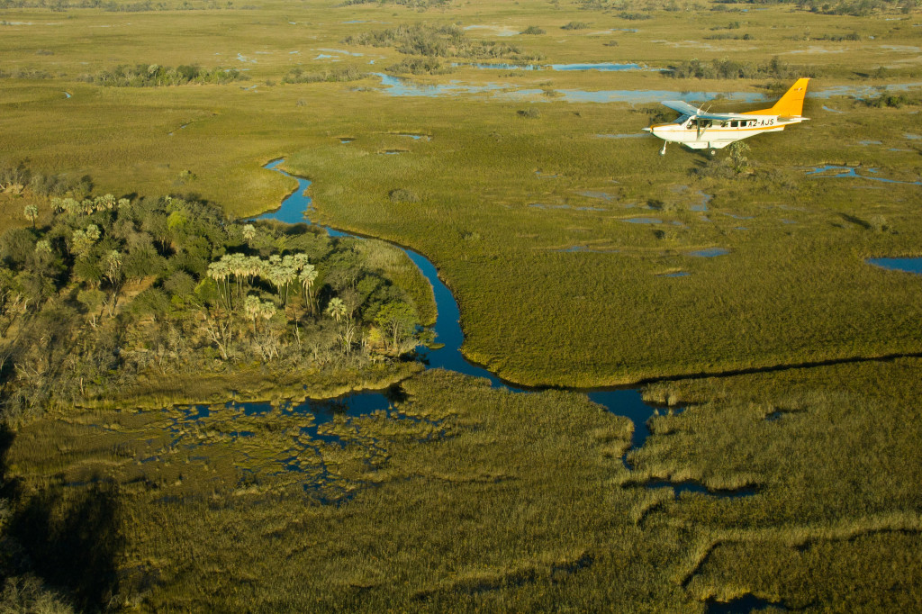 Experience The Heart Of The Okavango, A Rustic Safari Experience